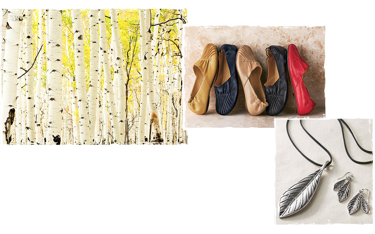 NATURE, SHOES, ACCESSORIES COLLAGE