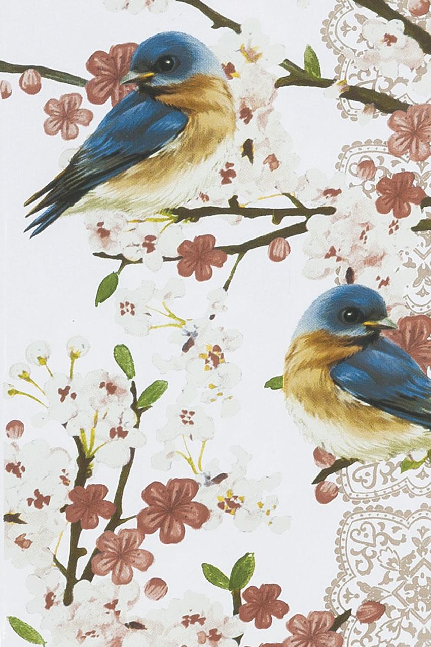Bluebirds Solar Birdfeeder - Coldwater Creek
