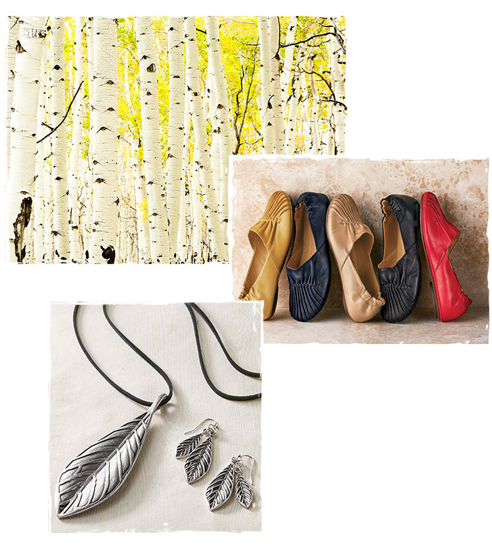 NATURE, SHOES, ACCESSORIES COLLAGUE